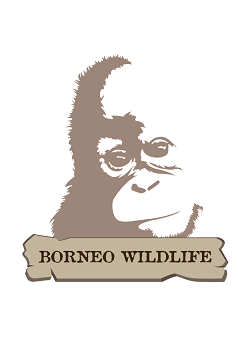 Borneo Wildlife Logo New
